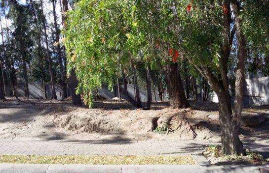 Terreno de Venta en Tanda, 1.026 m2, Urbanización Rancho San Francisco