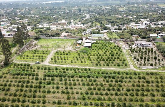 Terreno de venta,Tumbaco 1.618 m2 sector Collaquí, Urbanización La Lombardia.
