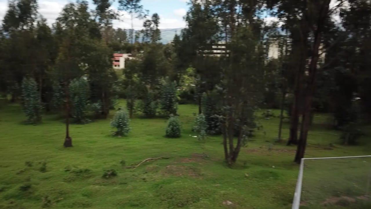 Terreno 24.887 m2 San Luis 4