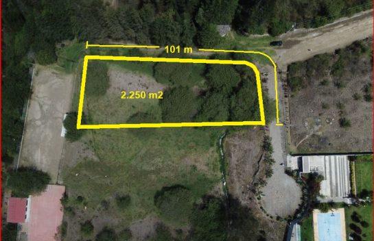 Venta de terreno Puembo, 2.250 m2, Hermanos Brawer, recta a Arrayanes.
