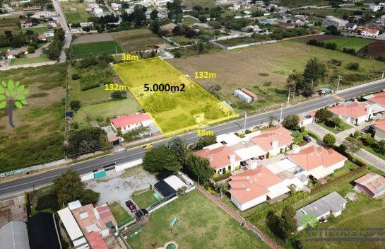 Terreno de venta, 5.000 m2, Puembo Cruz de piedra vía principal, sobre Julio Tobar Donoso.