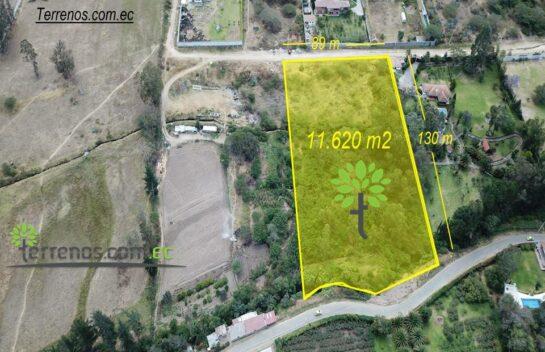 Terreno en venta 11.620 m2, Puembo vía Arrayanes.