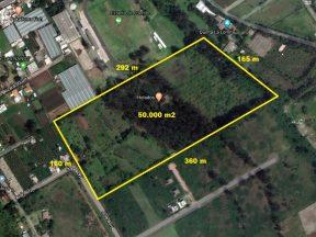 Venta de terreno en Puembo, 50.000 m2. Calle Jose Borja a pocas cuadras del parque central