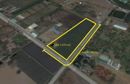 Terreno de venta en Tababela 7.273 m2, cerca al Aeropuerto Mariscal Sucre.