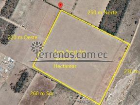 Terreno de venta en Malchingui 6 hectáreas en centro de Malchingui