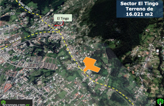 Terreno en Venta 17.000 m2 en el Tingo