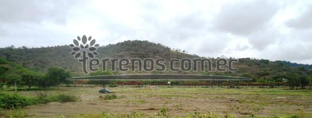 Vista Terrenos desde manglar (1)