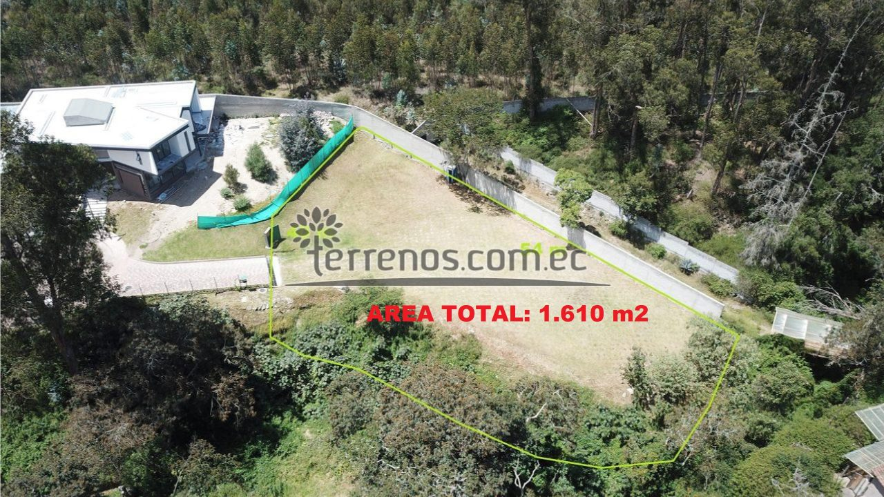 lote 1610