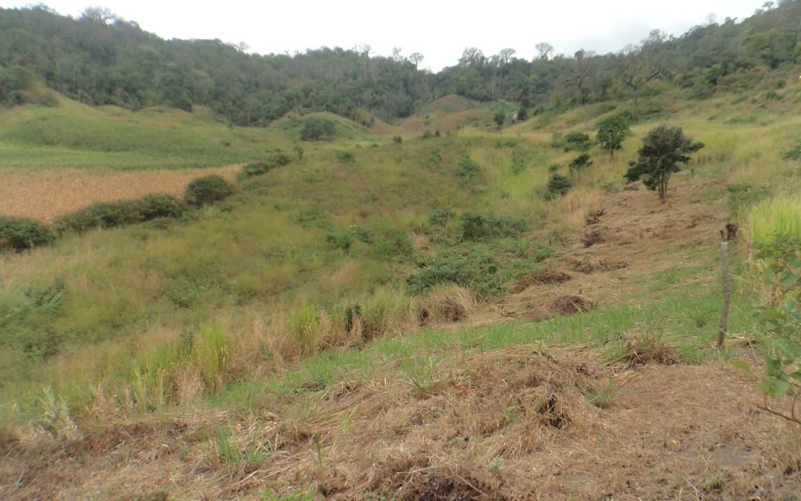 terrenos para quintas san vicente
