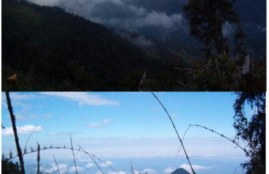 Terreno de venta en Otavalo sector Cambugan 9.190 Hectáreas