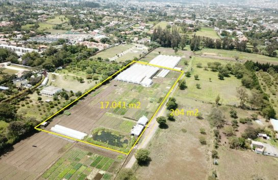 Terreno en venta, Tumbaco 17.041 m2. Sector Buena Esperanza.