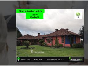 Mini Haciendas de Venta 2 has, en Machachi, Hacienda de Umbría