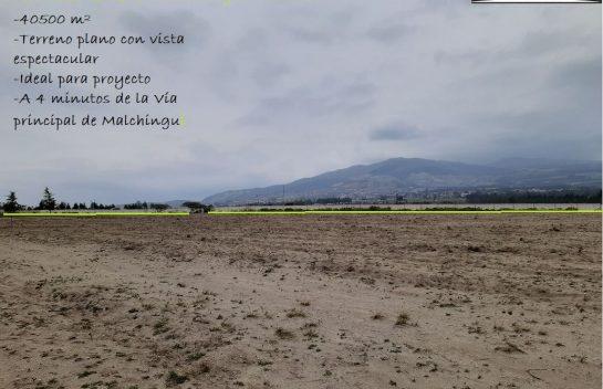 Hermoso Terreno 4.5hectáreas Malchingui Mirador