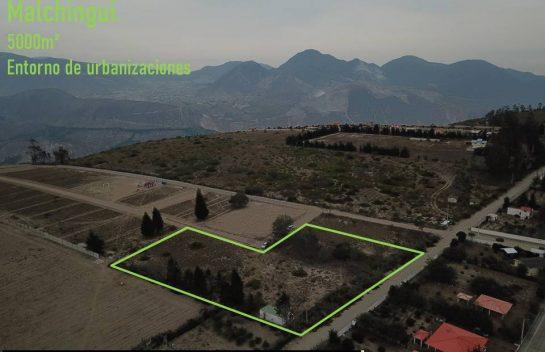 Terreno de venta 5000m2 Malchingui, entorno de urbanizaciones.
