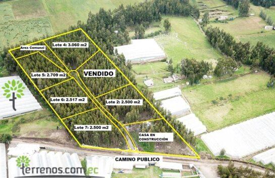 Venta de Terreno en Cayambe 2.063 m2. Lotización Privada Entre Bosques, sector Loma Larga.