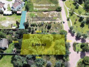 Espectacular terreno de venta, 1.290 m2 Puembo, Urbanización Las Buganvillas.