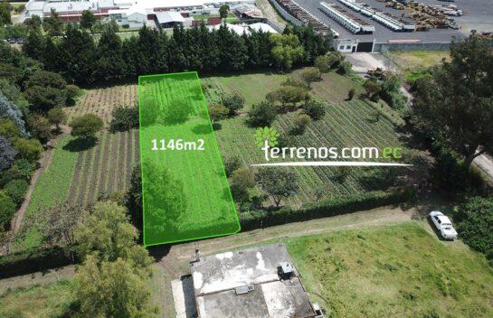 Terreno en Venta 1146 m2 -lPuembo Sector Colegio Highlandsl