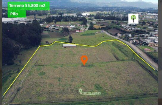 Terreno de venta en Pifo 55.800 m2 a 200 metros de la E35