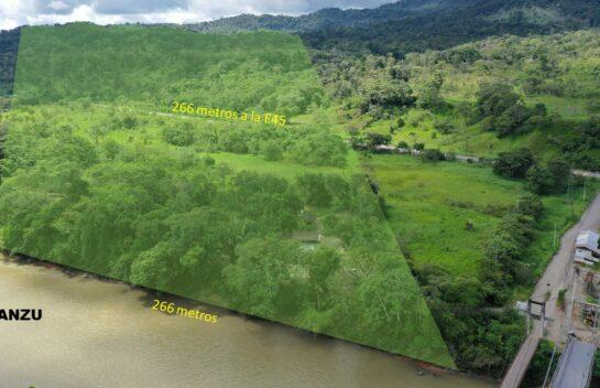 Terreno de venta en el Tena 44 hectareas, sector Arosemena Tola via E45